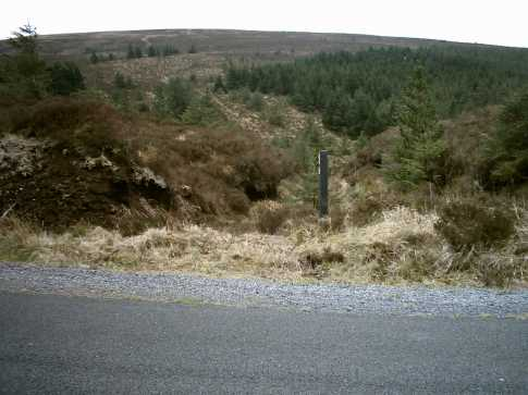 MountainViews.ie Picture about mountain Arderin (<i>Ard Eireann</i>) in area Slieve Bloom, Ireland