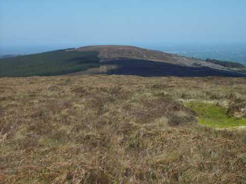 MountainViews.ie Picture about mountain Baunreaghcong in area Slieve Bloom, Ireland