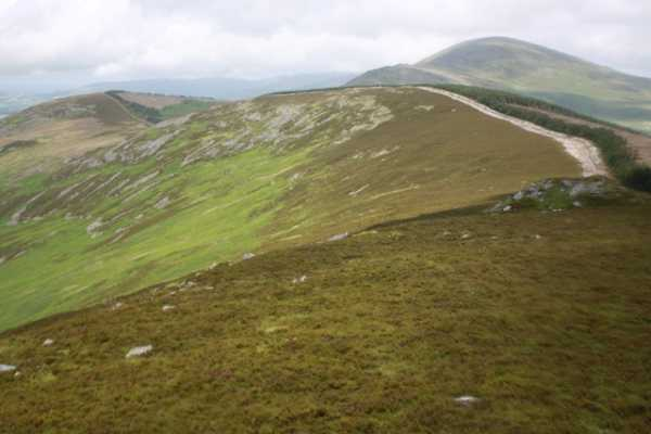 MountainViews.ie Picture about mountain Dho Bran in area Blackstairs Mountains, Ireland