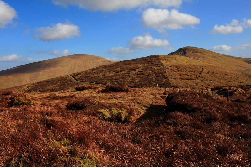 MountainViews.ie Picture about mountain Learmount Mtn S Top in area Sperrin Mountains, Ireland
