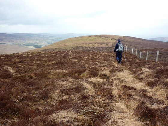 MountainViews.ie Picture about mountain Barnes Top in area Sperrin Mountains, Ireland