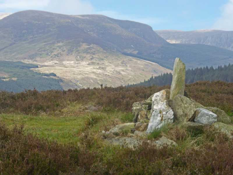 MountainViews.ie Picture about mountain Carriglineen Mountain in area Dublin/Wicklow, Ireland