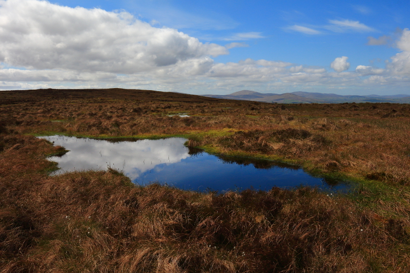 MountainViews.ie Picture about mountain Boviel Top (<i>Cnoc na Botha Maoile</i>) in area Sperrin Mountains, Ireland