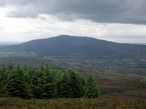 MountainViews.ie Picture about mountain Clermont in area Cooley/Gullion, Ireland