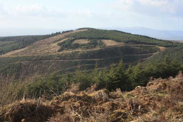 MountainViews.ie Picture about mountain Boolatin Top in area Shannon, Ireland