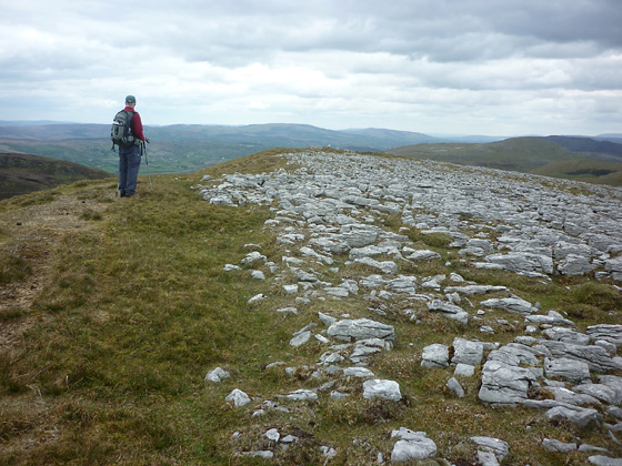 MountainViews.ie Picture about mountain Keelogyboy Mtn NE Top in area Dartry Mountains, Ireland