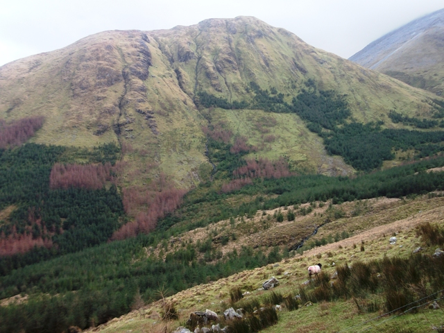 MountainViews.ie Picture about mountain Cúlóg in area Maamturks, Ireland
