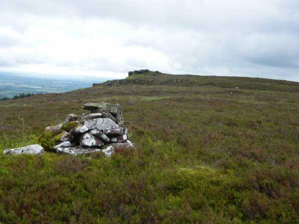 MountainViews.ie Picture about mountain Coolfree Mountain in area Ballyhoura Mountains, Ireland