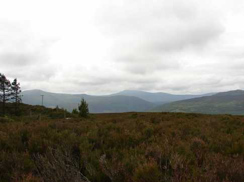 MountainViews.ie Picture about mountain Sleamaine (<i>Sliabh Meáin</i>) in area Wicklow, Ireland