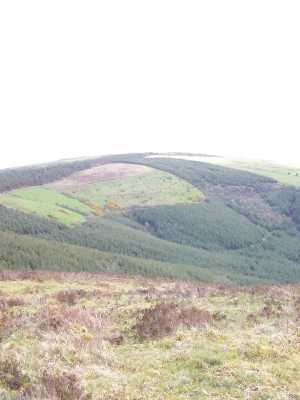 MountainViews.ie Picture about mountain Ring Hill in area Shannon, Ireland