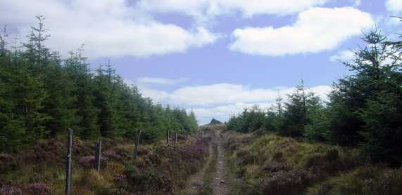 MountainViews.ie Picture about mountain Seefin in area Nagles Mountains, Ireland