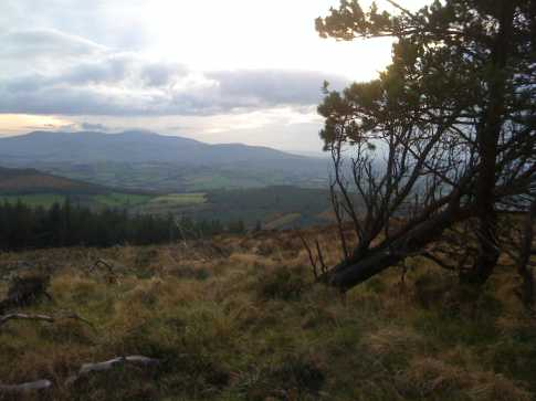 MountainViews.ie Picture about mountain Stookeen in area Dublin/Wicklow, Ireland