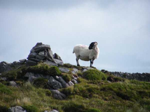 MountainViews.ie Picture about mountain Knockanouganish in area Caha Mountains, Ireland