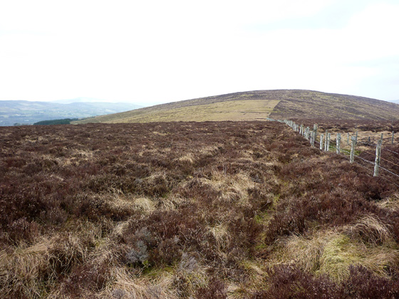 MountainViews.ie Picture about mountain Craignamaddy (<i>Creig na Madaí</i>) in area Sperrin Mountains, Ireland