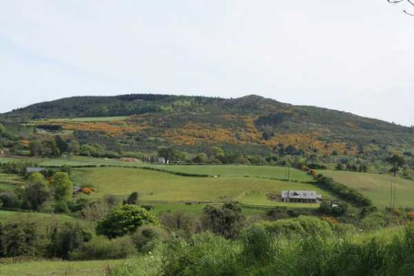 MountainViews.ie Picture about mountain Collon Hill in area Dublin/Wicklow, Ireland