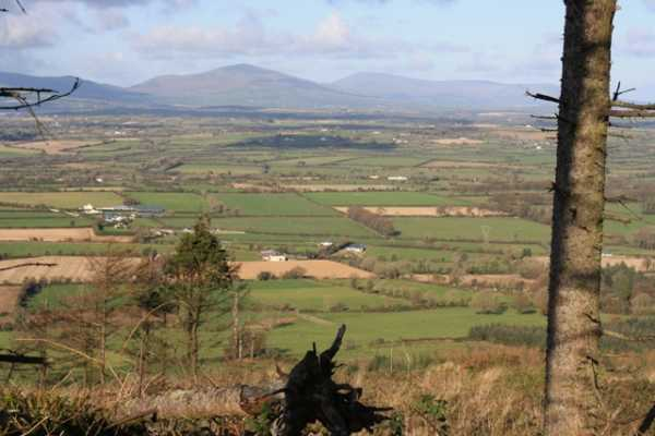 MountainViews.ie Picture about mountain Carrickbyrne Hill in area South Wexford, Ireland