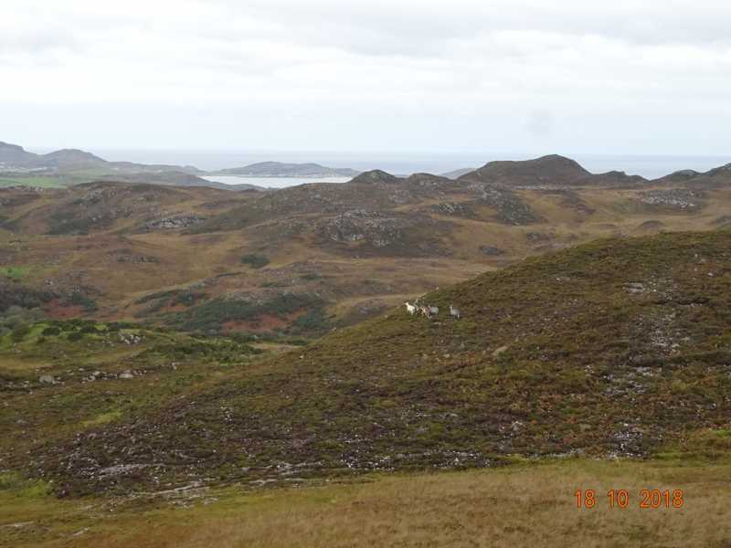 MountainViews.ie Picture about mountain Cnoc na Boirne in area Donegal NW, Ireland