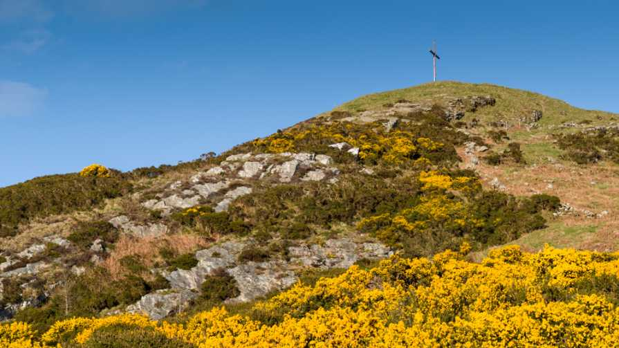 MountainViews.ie Picture about mountain Eagle Hill in area Dublin/Wicklow, Ireland