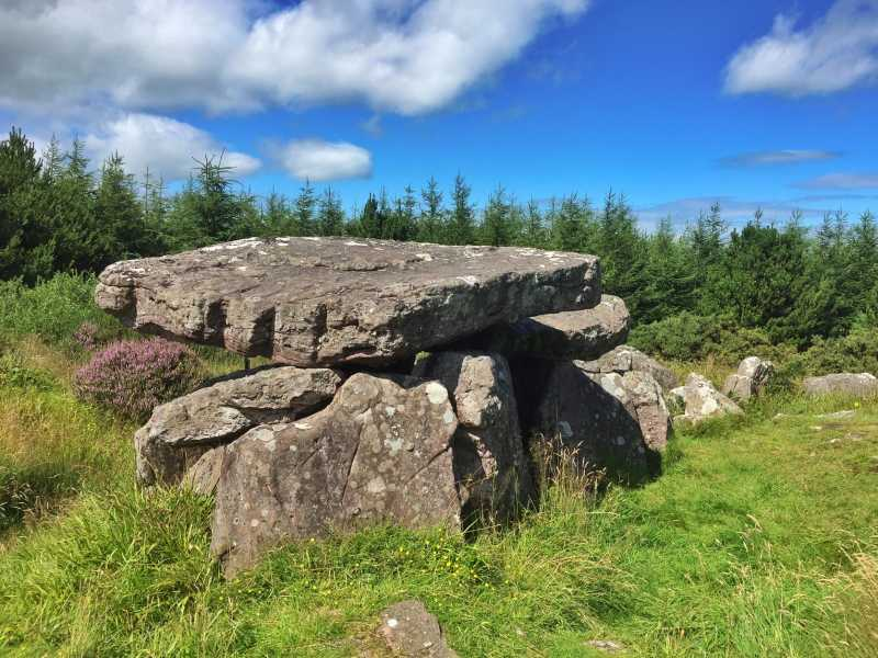 MountainViews.ie Picture about mountain Duntryleague Hill in area Ballyhoura Mountains, Ireland