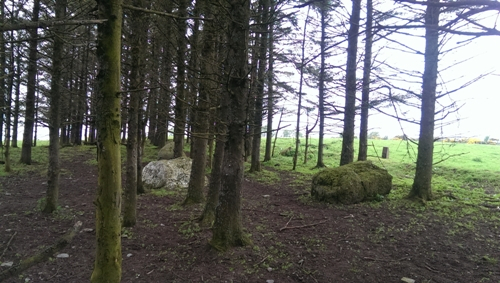 MountainViews.ie Picture about mountain Brewel Hill in area North Midlands, Ireland