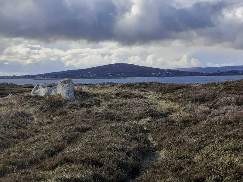 MountainViews.ie Picture about mountain Eragh Island South (<i>An tOileán Iarthach Theas</i>) in area Galway Islands, Ireland