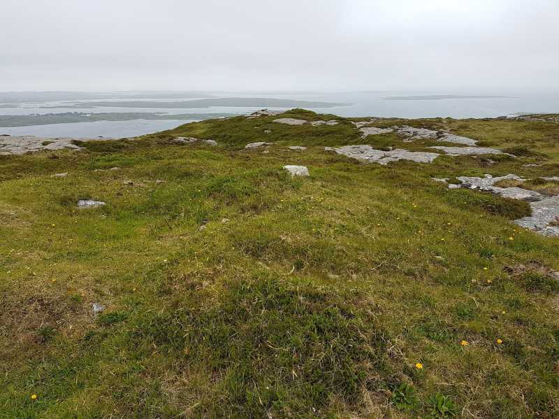 MountainViews.ie Picture about mountain Lettercallow in area Galway Coastal Hill, Ireland