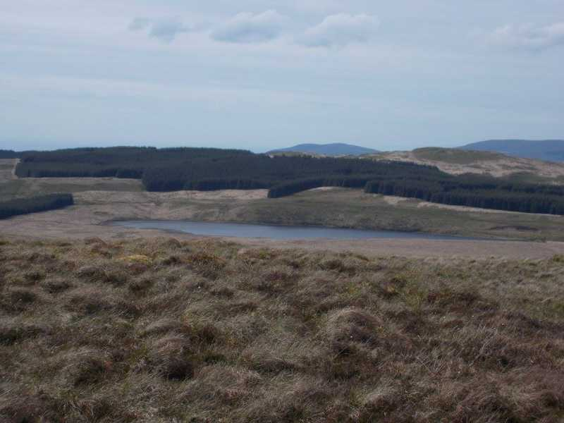MountainViews.ie Picture about mountain Foel Fras  in area Aberystwyth to Welshpool, Ireland
