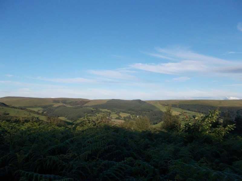 MountainViews.ie Picture about mountain Allt yr Hebog  in area South-West Wales, Ireland