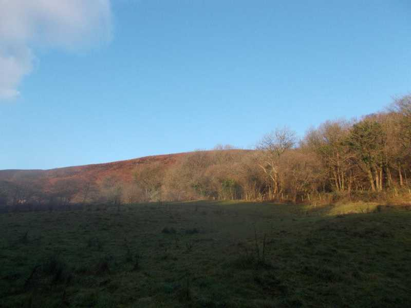 MountainViews.ie Picture about mountain Garth Hill  in area Neath to Chepstow, Ireland