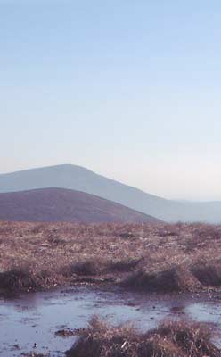 MountainViews.ie Picture about mountain Lobawn in area Dublin/Wicklow, Ireland
