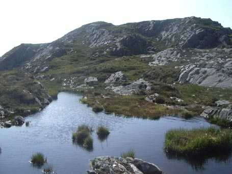 MountainViews.ie Picture about mountain Peakeen Mountain West Top in area Mangerton, Ireland