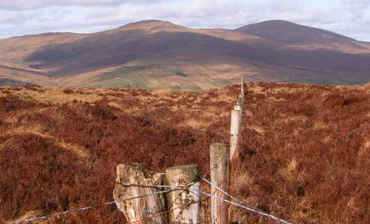 MountainViews.ie Picture about mountain Clogherny Top in area Sperrin Mountains, Ireland