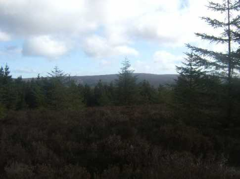 MountainViews.ie Picture about mountain Castleconor in area Slieve Bloom, Ireland