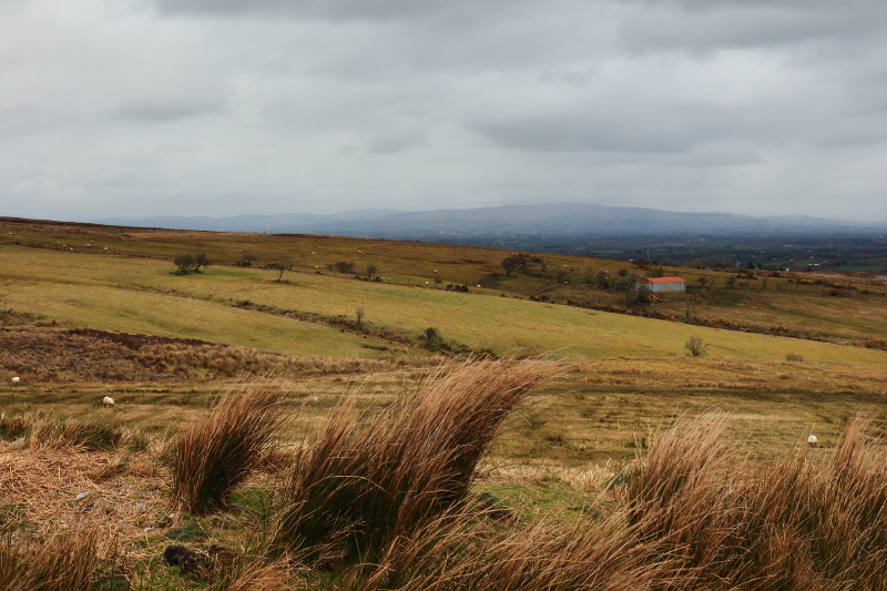 MountainViews.ie Picture about mountain Stranisk in area Fermanagh/S Tyrone, Ireland